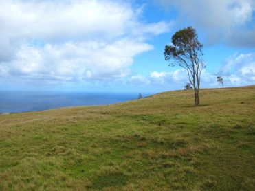 Volcán Maunga Tere Vaka